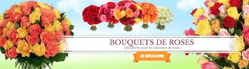 Bebloom-bouquet-de-roses