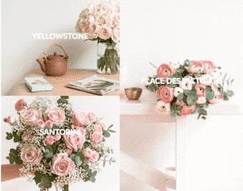 Bergamotte-fleurs