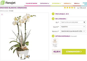 florajet-orchidee